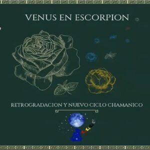 Clase Maestra – Retrogradación Clase-Venus